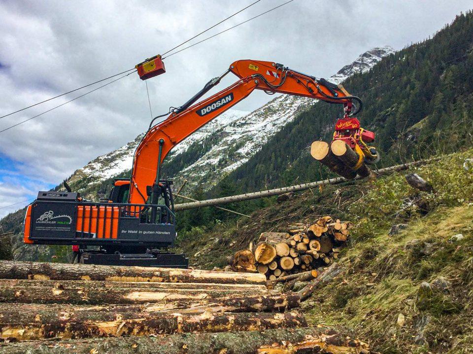 Laubichler Holz - Baggerprozessor mit Harvester Woody60