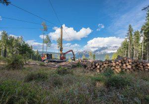 Holzernte Laubichler - Forstunternehmer in Österreich