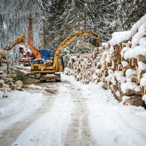 Holzernte im Winter