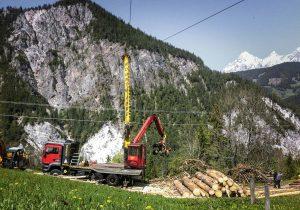 Forstwirtschaft und Holzwirtschaft Laubichler