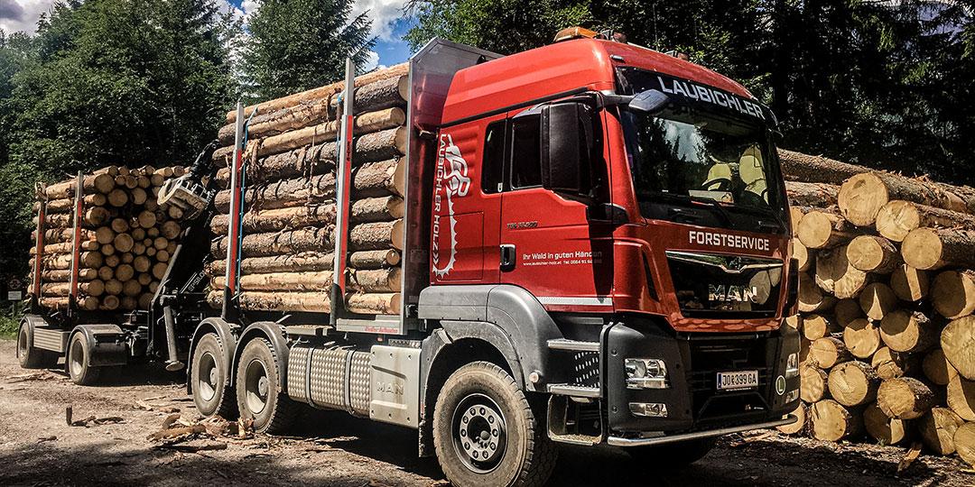 Rundholzsortierung und Holztransport mit MAN TGS