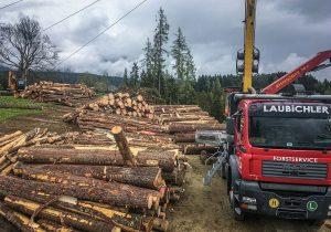 Forstunternehmen Laubichler Österreich
