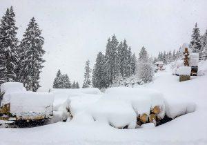 Holzernte Laubichler Wintereinbruch in der Steiermark