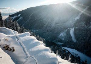 Winterlandschaft Waldarbeit