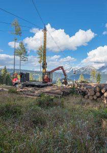Forstunternehmen Laubichler - Seilkranbringung im Gebirge