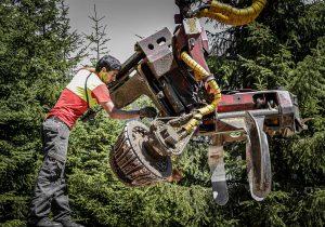 Harvesterkopf Woody 60