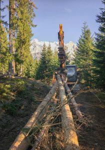 Holzbringung mit Kettenbagger und Holzzange Dachstein