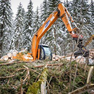 Kettenbagger mit Holzgreifer - Holzernte Winter