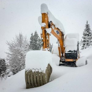 Kettenbagger Winter
