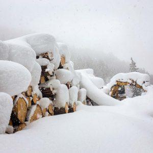 Holzernte Wintereinbruch Österreich