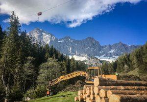 Bergabseilung mit Woodliner 3000 - Holzernte Dachstein