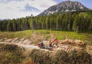 Forstunternehmen Laubichler Andreas in Österreich