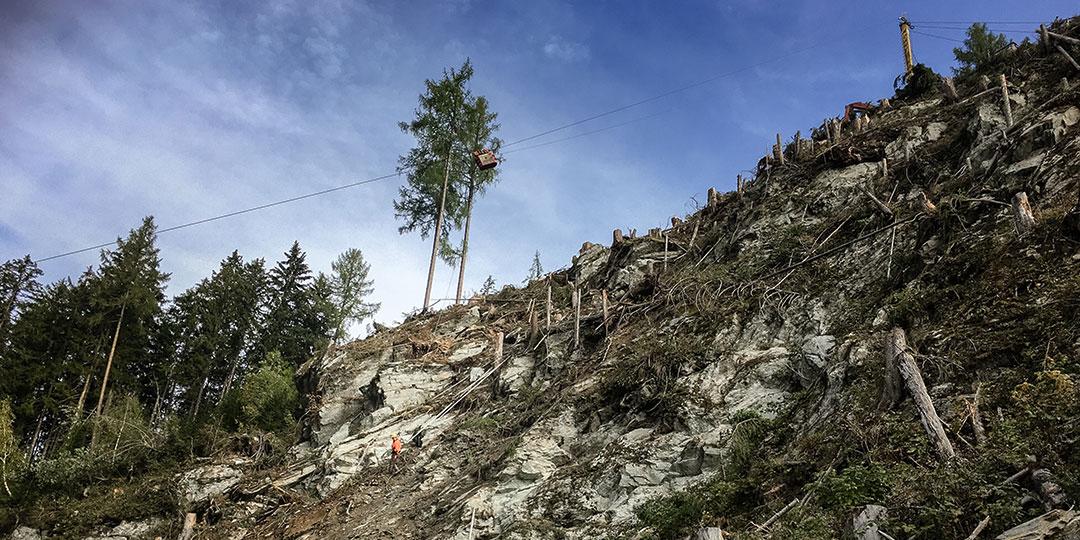 Seilkranbringung Forstbetrieb Laubichler