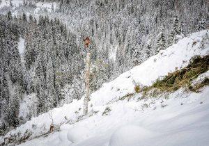 Laufwangen SKA2,5Z von Koller Forsttechnik im Winter