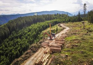 Forstunternehmen Laubichler Holzbringung mit Seilkran in Salzburg