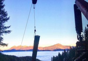 Waldarbeit über dem Nebelmeer